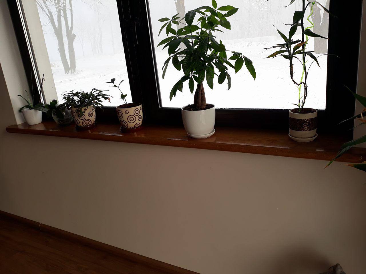 okna rustykalne gdańsk
